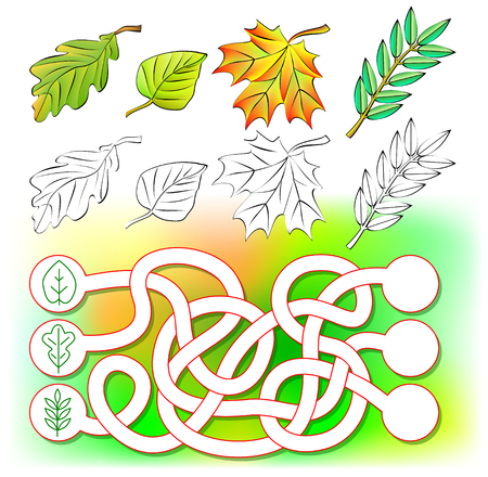 Exercises for young children. Need to color the leaves and draw new ones in the relevant circles.