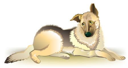 Illustration of sad dog, vector cartoon image.