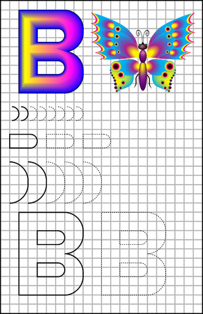 Educational page with alphabet letter B on a square paper. Developing skills for writing and drawing. Vector image.