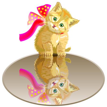 Little kitten sitting on the mirror, cartoon image illustration.
