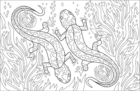 Black and white page for coloring. Drawing of couple salamanders. Worksheet for children and adults. Vector image. Vettoriali