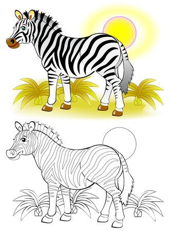 Colorful and black and white pattern for coloring Illustration of cute zebra Worksheet for children and adults Vector image.