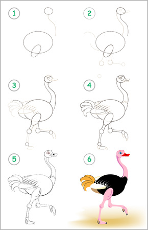 Page shows how to learn step by step to draw a cute ostrich. Developing children skills for drawing and coloring. Vector image.