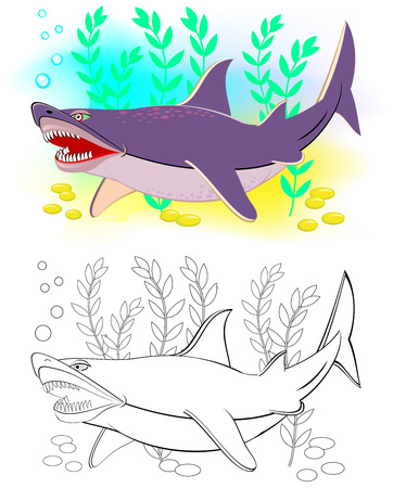 Colorful and black and white pattern for coloring. Illustration of cute shark. Worksheet for children and adults. Vector image.