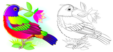 Colorful and black and white pattern for coloring. Illustration of cute painted bunting. Worksheet for children