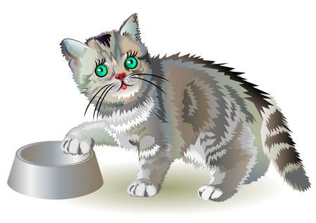 Illustration of hungry little kitten, vector cartoon image.
