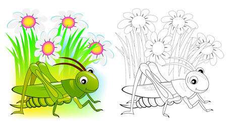 Fantasy illustration of cute cricket. Colorful and black and white page for coloring book. Printable worksheet for children and adults. Vector cartoon image. Ilustração