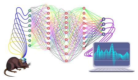 Stylizowana aktywność w mózgu szczura za pomocą fal neuronowych. Sztuczna komunikacja intelektowa. Głęboka sieć neuronowa. Rozpoznawanie wzorców. Druk do badań naukowych w dziedzinie biologii, fizyki i nanotechnologii. Ilustracje wektorowe