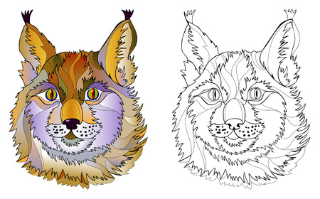 Colorful and black and white page for coloring book. Hand-drawn illustration of cute lynx head. Printable worksheet for children and adults. Vector cartoon image. Ilustração