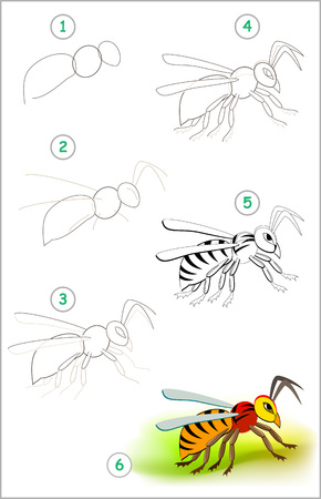 Educational page for kids shows how to learn step by step to draw a cute insect hornet. Back to school. Developing children skills for drawing and coloring. Vector cartoon image. Ilustração