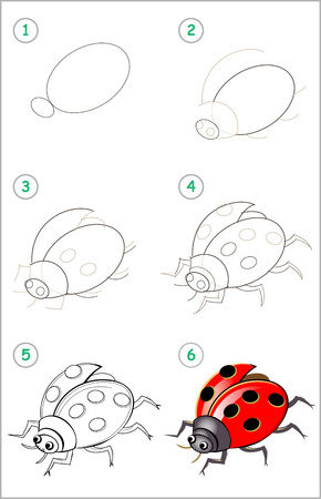 Educational page for kids. How to draw step by step an insect ladybird. Back to school. Developing children skills for drawing and coloring. Printable worksheet for baby book. Vector cartoon image. Ilustração
