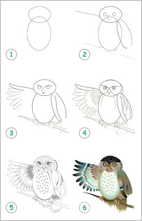 Educational page for kids. How to draw step by step a cute owl. Back to school. Developing children skills for drawing and coloring. Printable worksheet for baby book. Vector cartoon image.