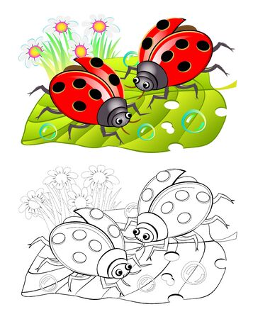 Two cute ladybirds sitting on a leaf. Colorful and black and white page for coloring book for kids. Fantasy illustration of insects. Printable worksheet for children and adults. Vector cartoon image. Ilustração