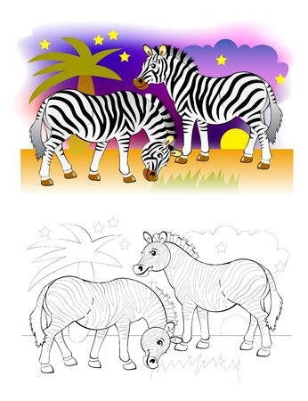 Two cute zebras in African desert. Colorful and black and white page for coloring book for kids. Fantasy illustration of animals. Printable worksheet for children and adults. Vector cartoon image.
