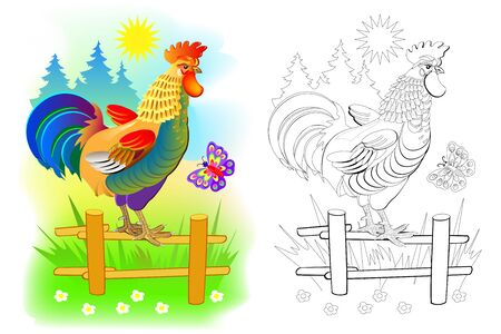 Illustration of cute rooster at sunrise. Colorful and black and white page for coloring book for kids. Domestic farm animal cock. Printable worksheet for children and adults. Vector cartoon image.