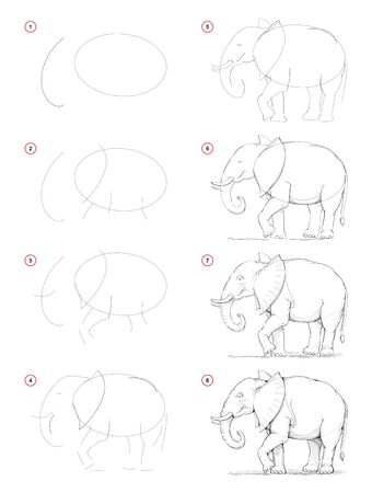 How to draw from nature step by step sketch of African elephant. Creation pencil drawing. Educational page for artists. School textbook for developing artistic skills. Hand-drawn vector image. Stock Illustratie