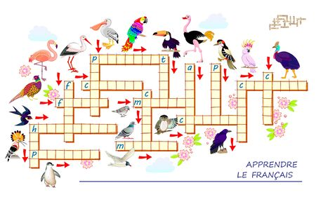Crossword puzzle game with different birds. Learn French. Educational page for children to study French language and words. Printable worksheet for kids textbook. Back to school. Vector cartoon image. Stock Illustratie