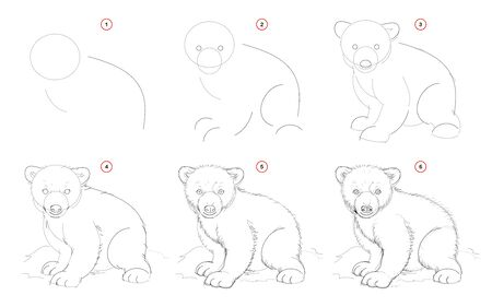 How to draw from nature sketch of white teddy bear. Creation step by step pencil drawing. Educational page for artists. School textbook for developing artistic skills. Hand-drawn vector image.