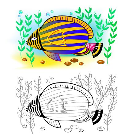 Colorful and black and white page for coloring book for kids. Fantasy drawing of cute tropical emperor angelfish. Printable worksheet for children and adults. Hand-drawn vector image. Stock Illustratie