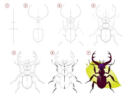 How to draw step by step a cute stag beetle. Educational page for kids. Back to school. Developing children skills for drawing and coloring. Printable worksheet for baby book. Vector cartoon image.