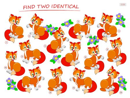 Logic puzzle game for children and adults. Need to find two identical foxes. Printable page for kids brain teaser book. Developing spatial thinking skills. IQ training test. Vector cartoon image. Illusztráció