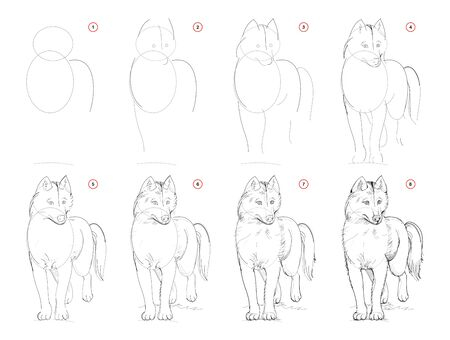 How to draw sketch of imaginary cute husky dog. Creation step by step pencil drawing. Education for artists. Textbook for developing artistic skills. Hand-drawn vector on computer by graphic tablet.