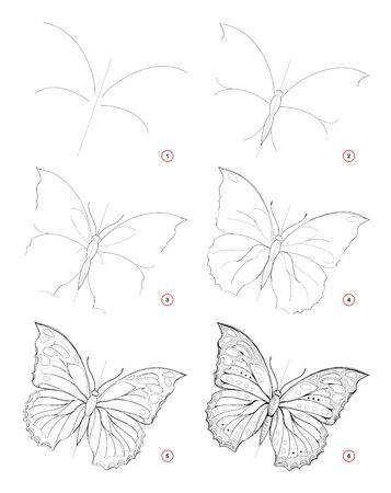 How to draw sketch of beautiful fantastic butterfly. Creation step by step pencil drawing. Education for artists. Textbook for developing artistic skills. Hand-drawn vector on computer.