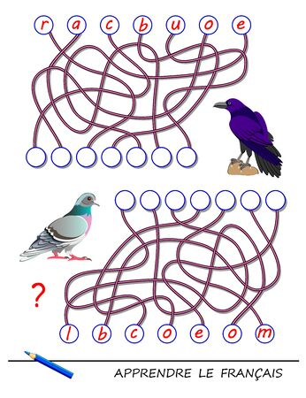 Learn French. Logic puzzle game with cute birds for study French language. Find correct places for letters, write them in relevant circles and read the word. Printable worksheet for kids textbook.
