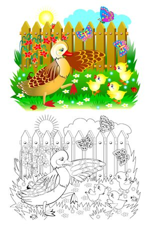 Colorful and black and white page for coloring book for kids. Illustration of mother duck and little ducklings. Cute family in farm. Printable worksheet for children textbook. Vector cartoon image.