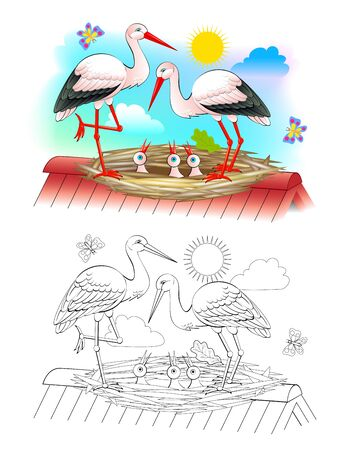 Illustration of happy stork family with mother, father and babies in the nest. Colorful and black and white page for coloring book for kids. Printable worksheet for children textbook. Vector image.