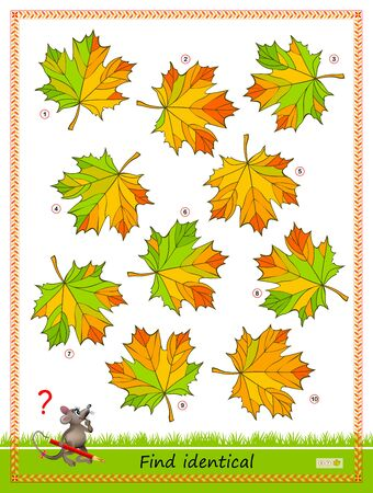 Logic puzzle game for children and adults. Find two identical leaves. Printable page for kids brain teaser book. Developing spatial thinking skills. IQ training test. Flat vector cartoon image. Çizim