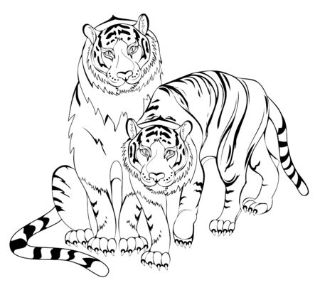 Black and white page for kids coloring book. Illustration of a tigers couple. Worksheet for children and adults. Modern print for fashion, embroidery, tattoo, decoration. Hand-drawn vector image.