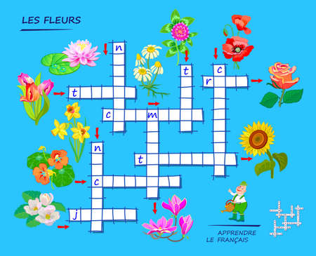 LEARN FRENCH. Crossword puzzle game with flowers. Educational page for children to study French language and words. Printable worksheet for kids textbook. School exercise book. Flat vector.