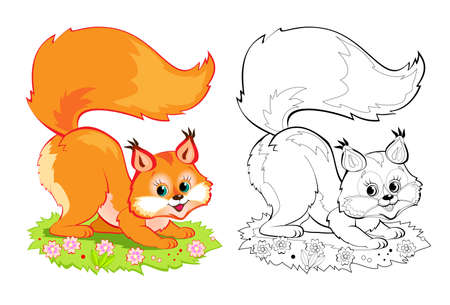 Colorful and black and white page for coloring book. Illustration of cute little squirrel. Printable worksheet for children exercise book. Online education. Clip-art cartoon vector. Animals for kids.