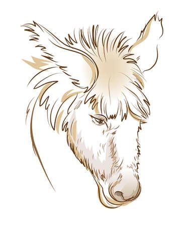 Stylized head of sad donkey. Digital drawing. Fantasy illustration. Printable sketch of farm animal. Modern print for fashionable fabric, textile, decoration, embroidery, tattoo. Hand-drawn vector. Vektorgrafik