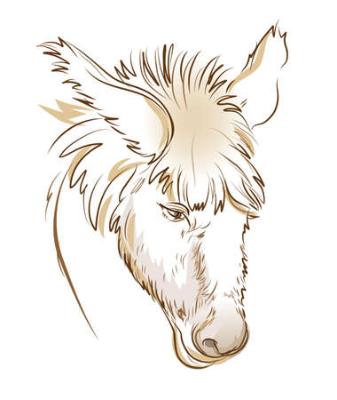 Stylized head of sad donkey. Digital drawing. Fantasy illustration. Printable sketch of farm animal. Modern print for fashionable fabric, textile, decoration, embroidery, tattoo. Hand-drawn vector.