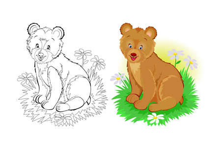 Colorful and black and white page for coloring book. Illustration of cute little bear. Printable worksheet for children exercise book. Online education. Clip-art cartoon vector. Animals for kids. Иллюстрация