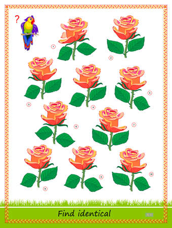 Logic puzzle game for children and adults. Find two identical roses. Memory exercises for seniors. Printable page for kids brain teaser book. Developing spatial thinking. IQ test. Play online.