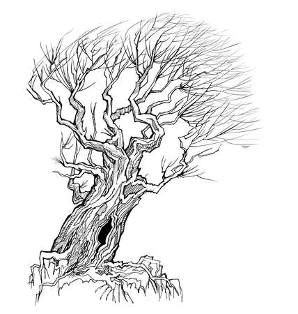 Fantasy illustration of old tree resisting the wind. Autumn landscape with willow tree silhouette. Print for fabric and tattoo. Black and white vector image. Sketch in ink and pen style.