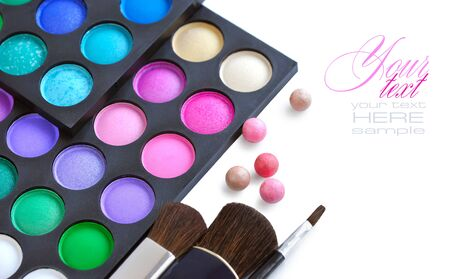 cosmetic products: Professional eye shadows palette with makeup brushes on a white background Stock Photo