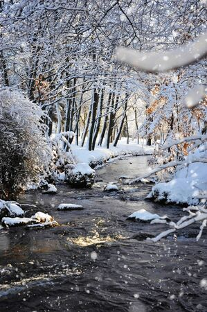 Winter landscape with the river in frosty sunny day photo