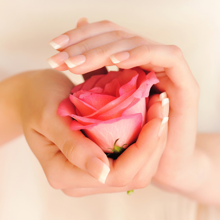 manicured hands: Closeup image of pink french manicure with rose