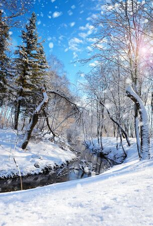 wintery day: Beautiful winter landscape with the river