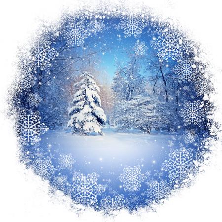 Hermoso paisaje de invierno Foto de archivo - 48738953