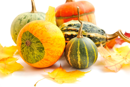 halloween concept: Decorative pumpkins and autumn leaves on a white background Stock Photo