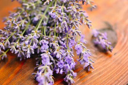 lavandula: Lavender flowers (Lavandula) on a wooden background