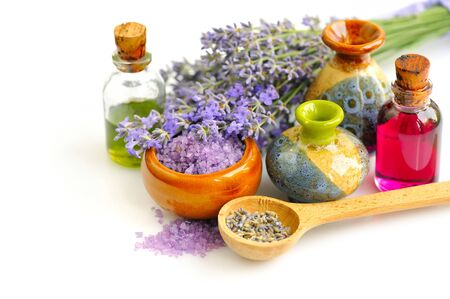lavender oil: Lavender fresh and dry flowers and lavender oil