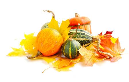 zucche decorative e foglie di autunno su uno sfondo bianco
