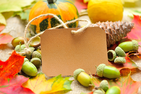 acorn: Blank paper sticker with autumn acorns and leaves Stock Photo
