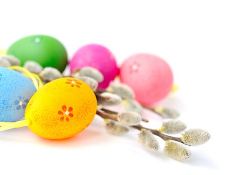 pink pussy: Colorful easter eggs and branches of willow on white background Stock Photo
